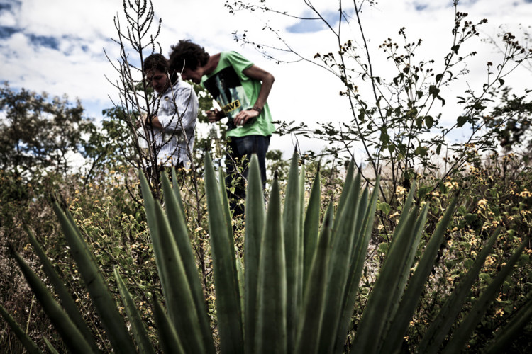 Photo by http://www.rsvlts.com/2013/03/28/beverage-of-the-banditos-the-journey-of-mezcal-from-mexico-to-guatemala-to-new-york/