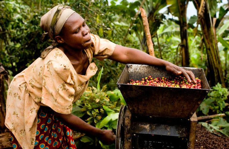 Fair trade, coffee