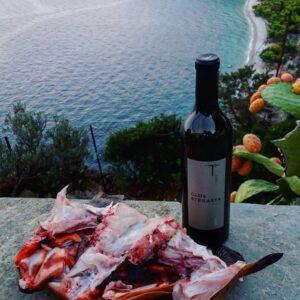 κρασιά, πλάσματα της θάλασσας