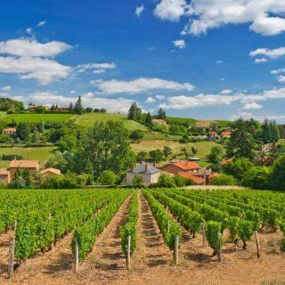 γαλλικό κρασί